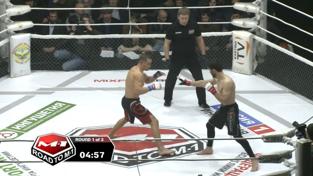 Валерий Грицутин vs Джамалейл Султыгов, Road to M-1