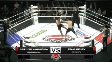 Сайпудин Магомедов vs Адам Аушев, Road to M-1